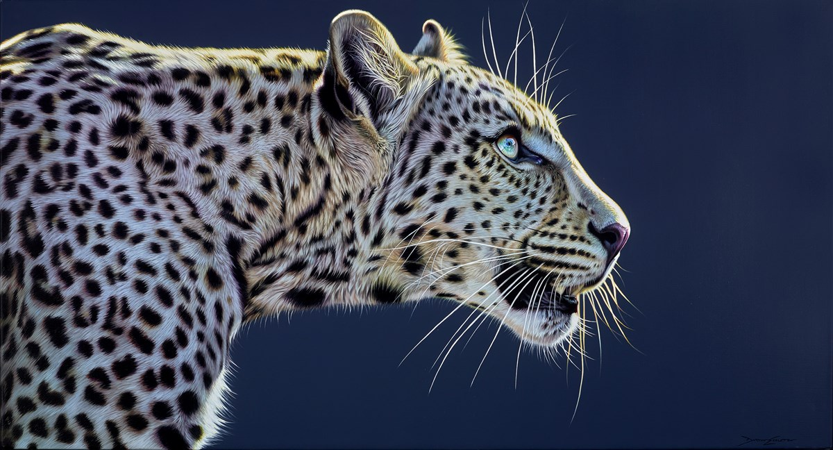 Touched by the Light by darryn eggleton -  sized 51x28 inches. Available from Whitewall Galleries